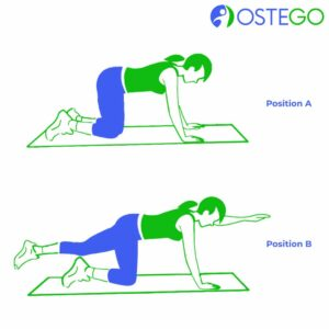 Drawing of a woman demonstrating birddog position for osteoporosis prevention.