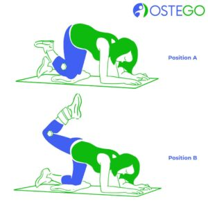 Drawing of a woman demonstrating a kneeling leg curl exercise for osteoporosis prevention.