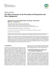 The Effect Of Exercise On The Prevention Of Osteoporosis And Bone Angiogenesis